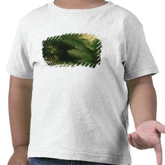 Cadmus and the Dragon Tee Shirts