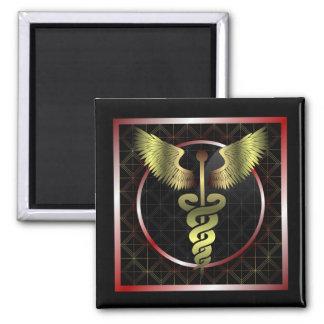 Caduceus Medical Health Magnet
