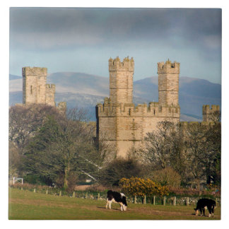 Caernarfon Castle Wales. Tile