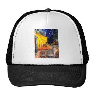 Cafe - Abyssinian (blue 21) Trucker Hat