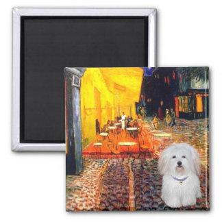 Cafe - Coton de Tulear 4b Square Magnet
