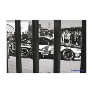 Caged Animal Canvas Print