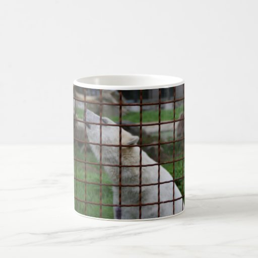 Caged polar bear mug