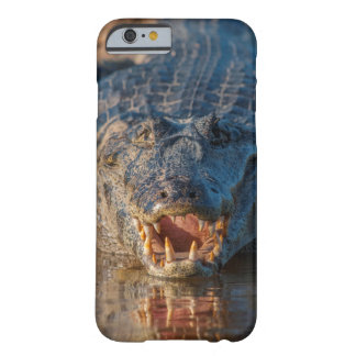 Caiman shows its teeth, Brazil Barely There iPhone 6 Case