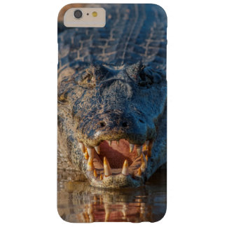 Caiman shows its teeth, Brazil Barely There iPhone 6 Plus Case