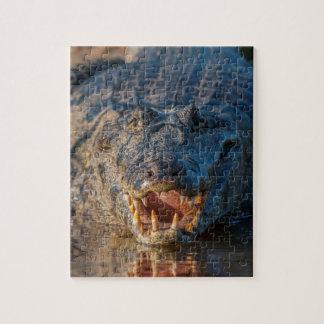 Caiman shows its teeth, Brazil Jigsaw Puzzle