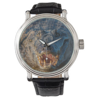 Caiman shows its teeth, Brazil Wrist Watches