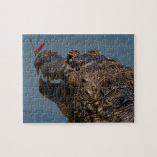 Caiman with a butterfly, Brazil Jigsaw Puzzle