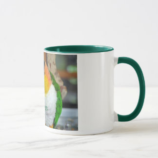 Caique Crazy! Mug