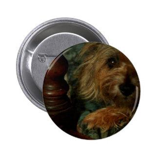 Cairn Terrier 2 Inch Round Button
