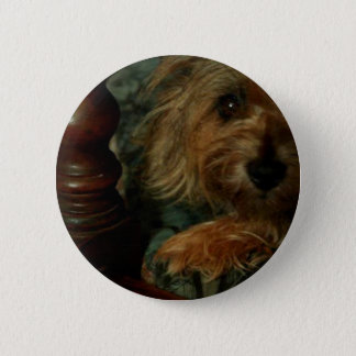 Cairn Terrier 2 Inch Round Button