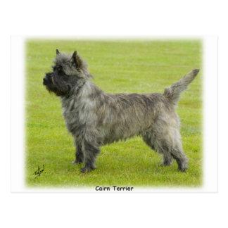 Cairn Terrier 9R071D-129 Postcard