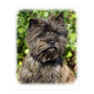 Cairn Terrier 9W048D-142_2 Postcard
