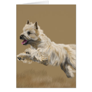 Cairn Terrier called Mackey Card