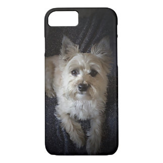 Cairn Terrier Dog Cute iPhone Case
