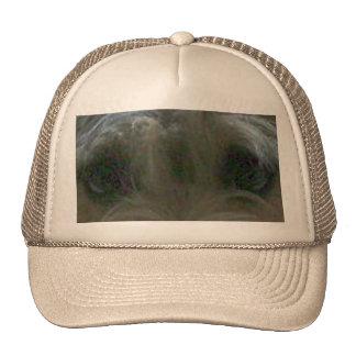 cairn terrier eyes trucker hat