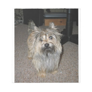 cairn terrier full notepad