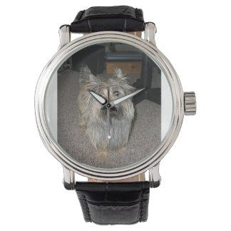 cairn terrier full wristwatches