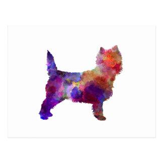 Cairn Terrier in watercolor Postcard