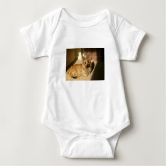 Cairn terrier laying baby bodysuit