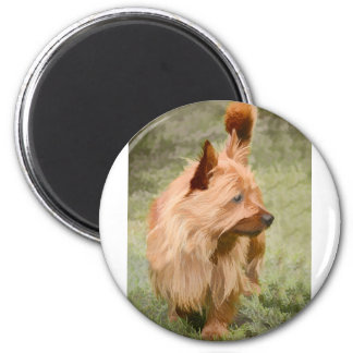 Cairn Terrier - Painting Magnet