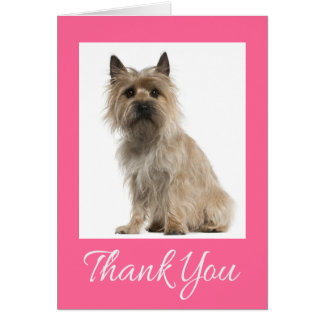 Cairn Terrier Pink Thank You Puppy Dog Card
