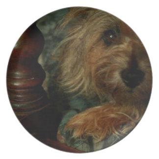 Cairn Terrier Plates