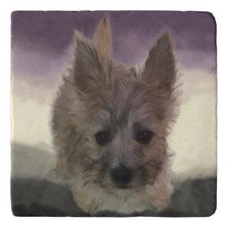 Cairn Terrier Puppy Dog Purple Marble Stone Trivet