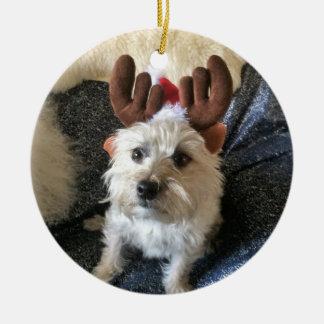 "Cairn Terrier ""Reindeer"" Christmas Ornament"