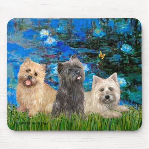 Cairn Terriers 4-13-21 - Lilies 3 Mouse Pads