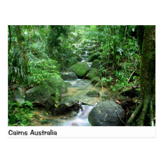 Cairns Forest Creek Queensland Australia Post Card