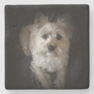 Cairntensity Square Stone Coaster