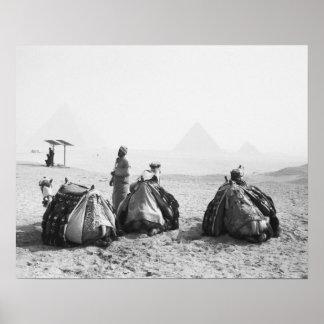 Cairo Egypt, Camel Jockeys Giza Pyramids (NR) Poster