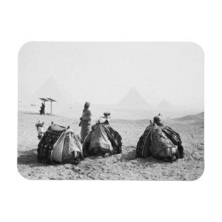Cairo Egypt, Camel Jockeys Giza Pyramids (NR) Rectangular Photo Magnet