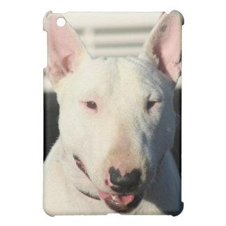 Caisse anglaise de point d ipad de bull-terrier