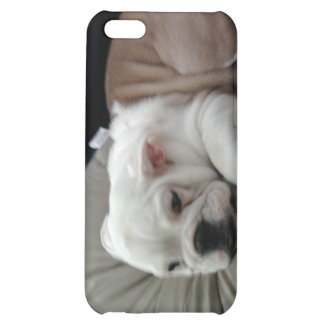 Caisse de point de chien de Taureau Étuis iPhone 5C