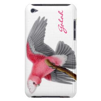 Caisse personnalisable de point de cacatoès rose coque iPod touch Case-Mate