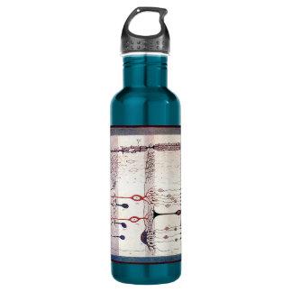Cajal 710 Ml Water Bottle