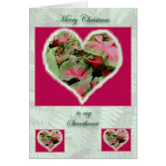 Caladium Sweetheart Christmas Card