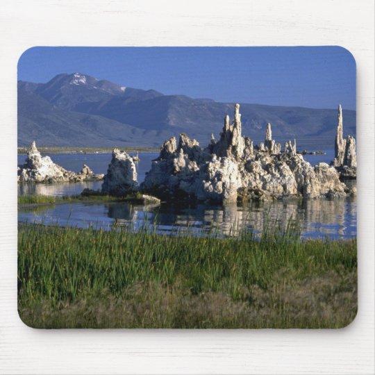 Calcium carbonate tufa, Mono Lake, CA Mouse Pad