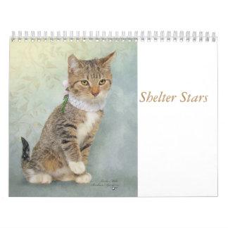 Calendar art featuring shelter animals