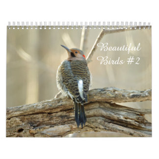 Calendar Beautiful Birds #2