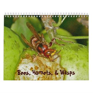 Calendar - Bees, Hornets, & Wasps