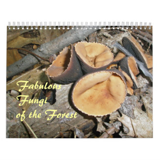 Calendar - Fabulous Fungi Of The Forest