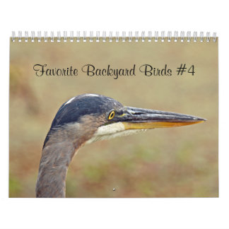 Calendar Favorite Backyard Birds
