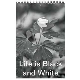 Calendar - Life is Black and White