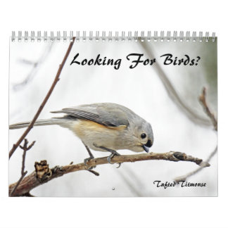 Calendar - Looking For Birds?