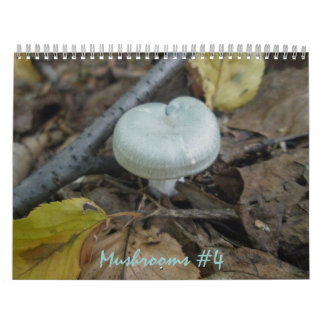 Calendar - More Marvelous Mushrooms #4