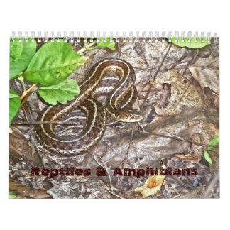Calendar Reptiles & Amphibians #1