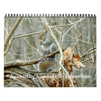 Calendar - Squirrels Chipmunks Groundhogs